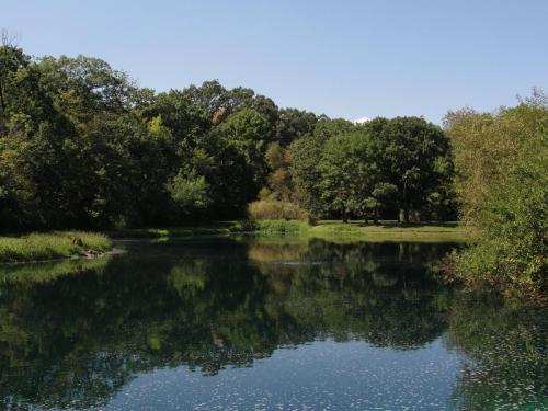 Aerated Pond 4