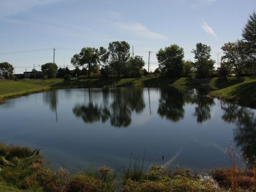 Managed Pond